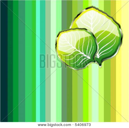 Go green leaf background with high contrast colors stock - Contrast with green colour ...