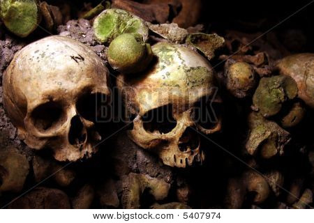 Skulls In A French Catacomb