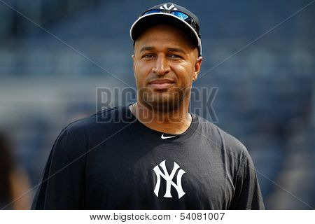 BRONX, NY-JUNE 1; New York Yankees outfielder Vernon Wells before the game on June 1, 2013 at Yankee Stadium in the Bronx.