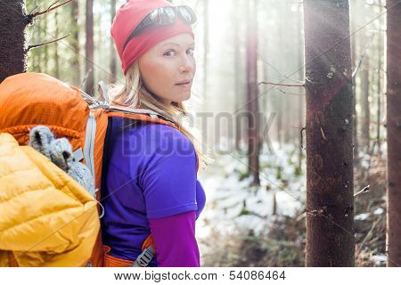 Woman Hiking In Winter Forest Sunlight