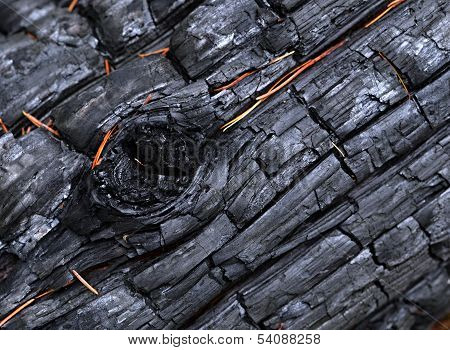 A Charred Wood With Bulges
