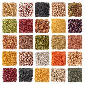 stock photo of legume  - Legume collection isolated on white background - JPG