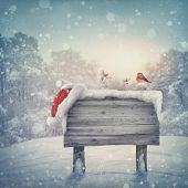 foto of snow forest  - Wooden sign and santa hat in winter forest - JPG