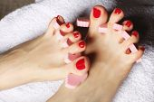 image of painted toenails  - foot pedicure applying woman - JPG