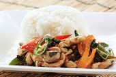 stock photo of gai  - fried basil chicken and rice  - JPG