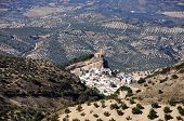 stock photo of pueblo  - View of the town and olive groves Pueblo blanco  - JPG