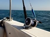 pic of game-fish  - Big game fishing reels and rods in the ocean - JPG