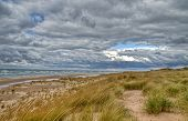 foto of dune grass  - Lake Michigan horizon with dune grass in the foreground and a moody grey sky as the backdrop - JPG