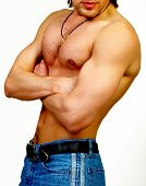pic of muscle man  - Strong male body