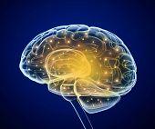 image of nerve cell  - Brain impulses - JPG