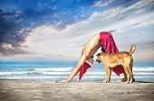 image of dog christmas  - Christmas yoga with dog by man in red trousers and Christmas hat on the beach near the ocean in India - JPG