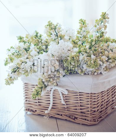 White Lilac Flowers In A Wicker Basket