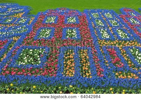 Flowers pattern in dutch spring garden Keukenhof Lisse Netherlands