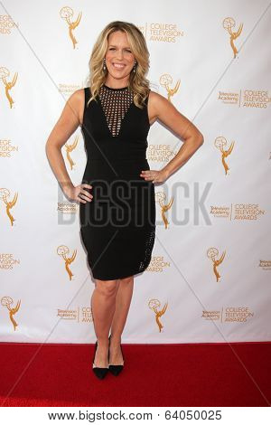 LOS ANGELES - APR 23:  Jessica St. Clair at the 35th College Television Awards at Television Academy on April 23, 2014 in North Hollywood, CA