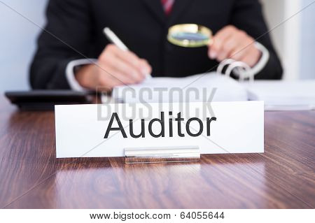 Auditor Looking At Document