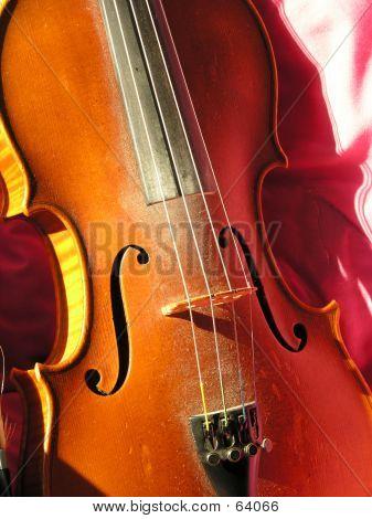 Violine oder Geige