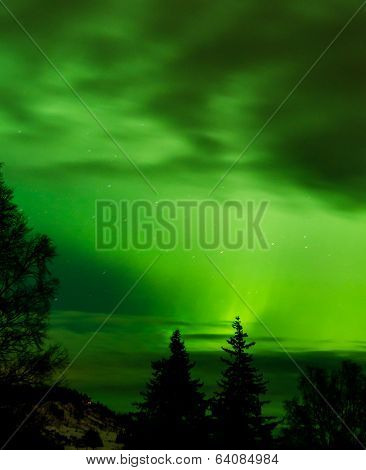 Aurora Light