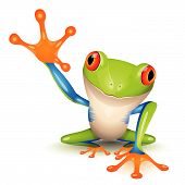 foto of orange frog  - Little tree frog on a white background - JPG