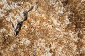 image of sand gravel  - Close up of Sand stone texture background - JPG