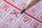 pic of lottery winners  - Close-up Of A Person Marking Number On Lottery Ticket With Pencil
