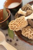 picture of morchella mushrooms  - Fresh spring morel mushrooms on a plate