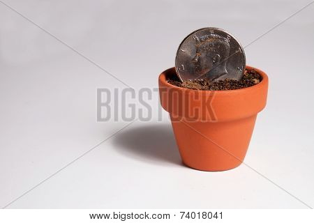 Dollar Coin Planted in a Pot