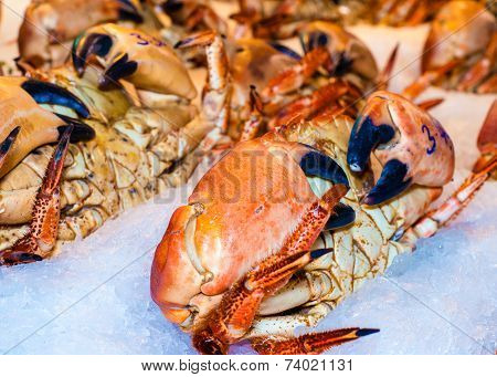 Closeup View On Fresh Crabs In The Market
