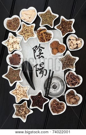 Chinese herbal medicine selection with acupuncture needles, moxa sticks and calligraphy script of yin and yang symbols on rice paper. Translation reads as yin yang.