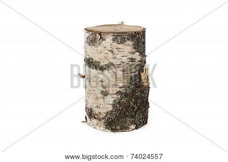 Isolated photo of wood stump