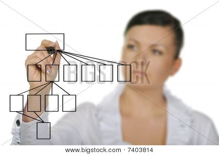 The Woman Drawing The Diagram