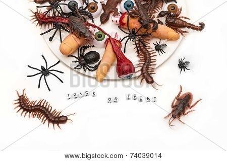 Trick Or Treat Candy Bugs Spilling Out Onto White Background