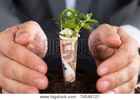 Businessman Protecting Business Growth