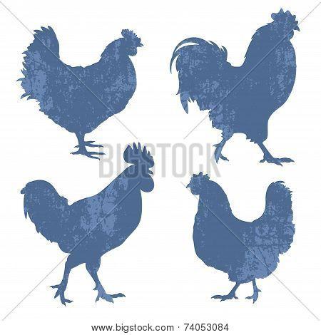Chicken Silhouette Grunge
