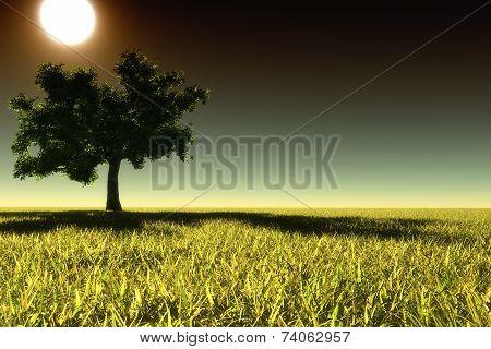 Autumn Landscape At Night