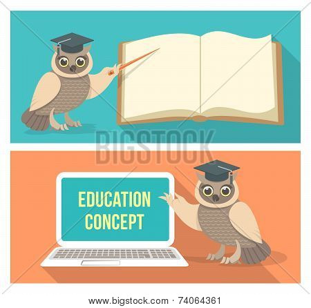 Wise Owl with Book and Laptop