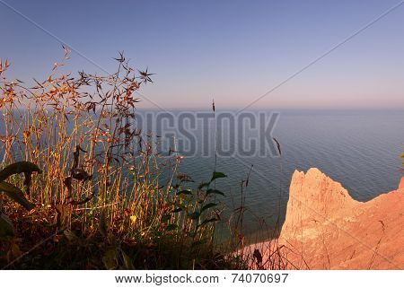 autumn foliage set against sea shore