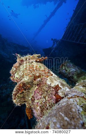 deep wreck scuba diving and exploration