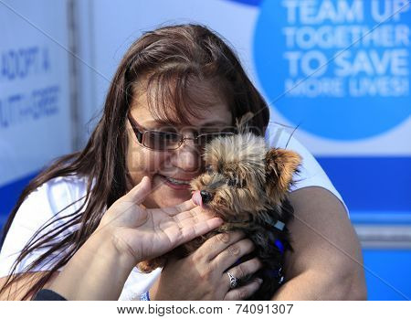 Yorkie gets some attention