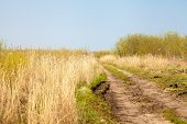 pic of tallgrass  - ong winding country road through tall grass prairie pasture - JPG
