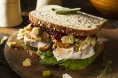 image of thanksgiving  - Homemade Leftover Thanksgiving Dinner Turkey Sandwich with Cranberries and Stuffing - JPG