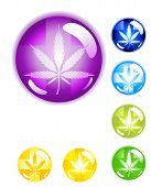 image of marijuana leaf  - 7 medical Marijuana leaf buttons isolated on white background with drop shadow - JPG