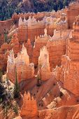 Hoodoos in Bryce Canyon poster