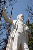picture of lenin  - Statue of Vladimir Lenin over spring trees - JPG