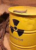 picture of radium  - Lizard on a barrel of radioactive waste - JPG