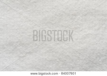 Texture Wadded Fabric Of White Color