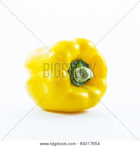 Yellow Chili Capsicum Fresh Ingredient