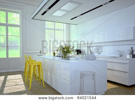 Luxurious kitchen. 3d rendering