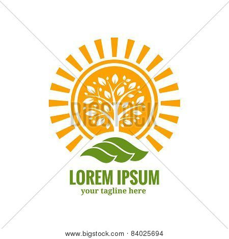 Sun tree logo template