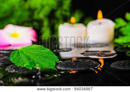 Spa Concept Of Hibiscus Leaf, Plumeria Flower, Green Branch And Candles On Zen Stones In Ripple Refl