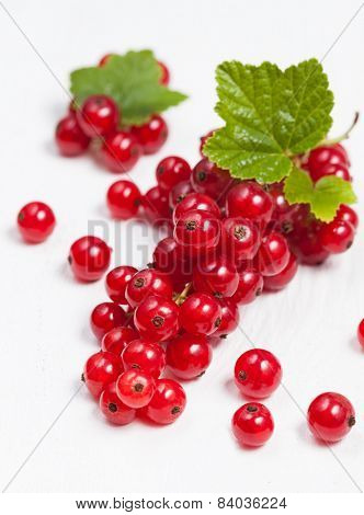 Red Currant Super Food On White Background